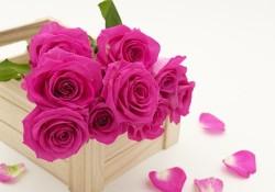 bouquet-3158355__340